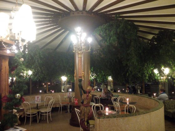 Cafe-Restaurant-Cobenzl-Ficus-Manege-3